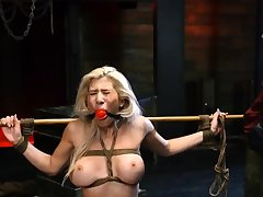 Tight dense bdsm Big-breasted blond venerated Cristi Ann is on